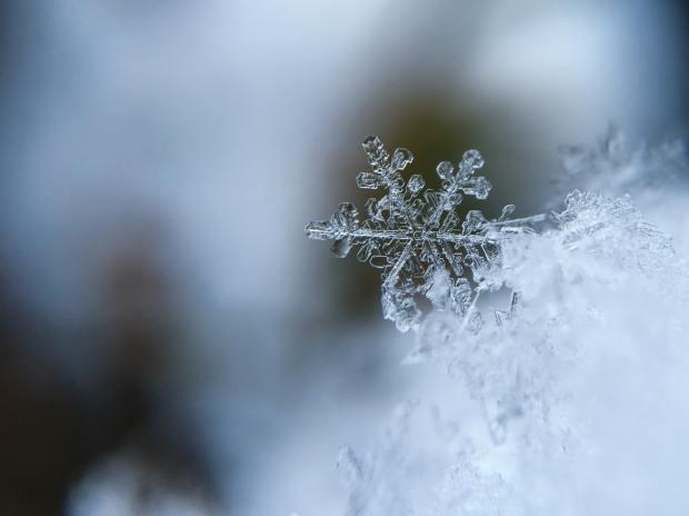 snowflake aaron burden